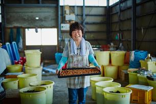 梅干しを持つ笑顔の女性の写真素材 [FYI02061051]
