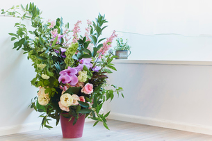 窓辺に飾った花の写真素材 [FYI02061122]