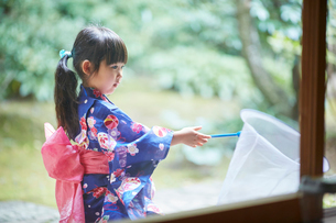 捕虫網を持った浴衣姿の女の子の写真素材 [FYI02061283]