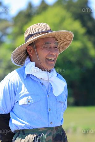 笑顔で遠くを眺める農夫の写真素材 [FYI02061294]