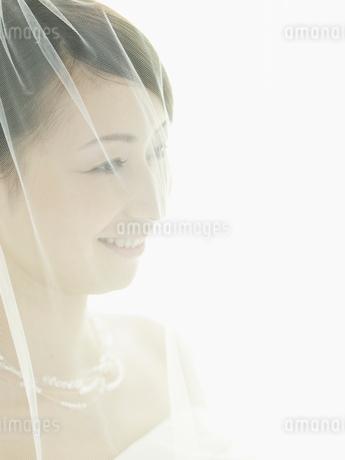 ベールに包まれたウェディングドレスの花嫁アップの写真素材 [FYI02061336]
