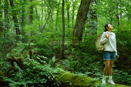 トレッキングをする女性の写真素材 [FYI02061421]