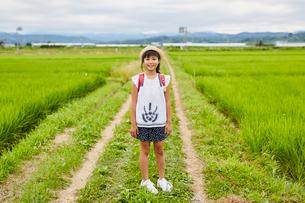 畦道に立つ小学生の女の子の写真素材 [FYI02061423]