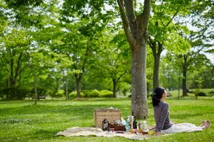 ピクニックを楽しむ女性の写真素材 [FYI02061537]