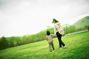 新緑の公園で手をつなぐ男の子と母親の写真素材 [FYI02061781]