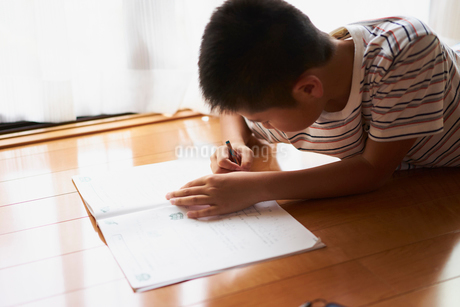 宿題をする男の子の写真素材 [FYI02061799]