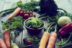 グリーンサラダとオーガニック野菜の写真素材 [FYI02062093]