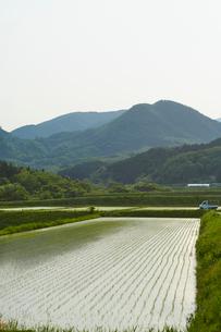 春の七ツ森と水田 宮城県の写真素材 [FYI02062129]