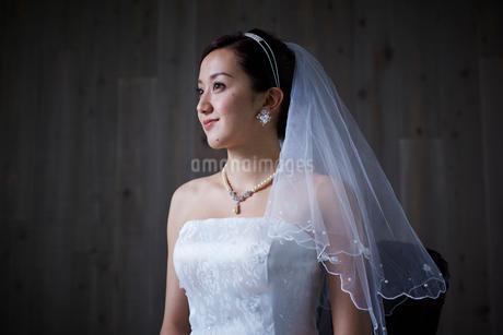 花嫁の写真素材 [FYI02062440]