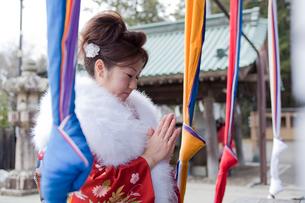 神社でお参りをする振袖姿の女性の写真素材 [FYI02062506]