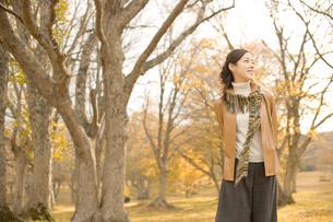 紅葉の森林とマフラーを巻いた女性の写真素材 [FYI02062682]