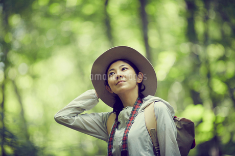 トレッキングをする女性の写真素材 [FYI02062783]