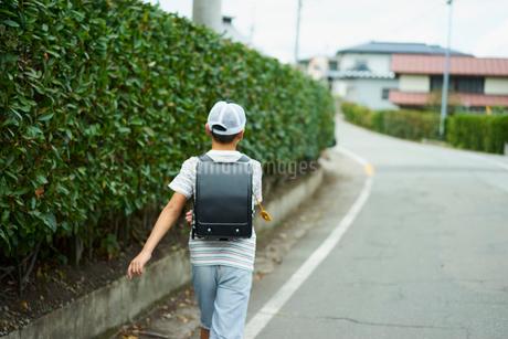 道を歩く小学生の男の子の写真素材 [FYI02062805]