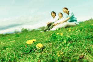 タンポポ咲く土手に座るファミリーの写真素材 [FYI02063221]