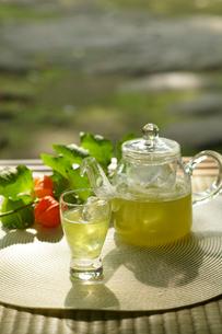 ガラスの茶器に入った冷茶の写真素材 [FYI02063225]