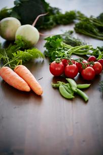 野菜集合の写真素材 [FYI02063300]