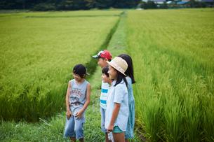 田んぼと子供達の写真素材 [FYI02063374]