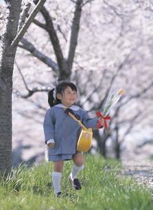 桜の木と新入園の女の子の写真素材 [FYI02063407]
