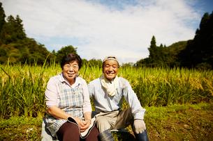 稲田に座る笑顔の農家夫婦の写真素材 [FYI02063551]
