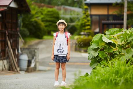 小学生の女の子ポートレートの写真素材 [FYI02063578]