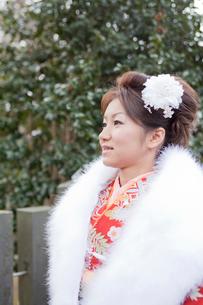 振袖姿の女性横顔の写真素材 [FYI02063747]