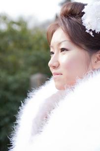 振袖姿の女性横顔アップの写真素材 [FYI02063787]