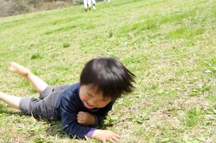 草原に寝転ぶ男の子の写真素材 [FYI02063900]