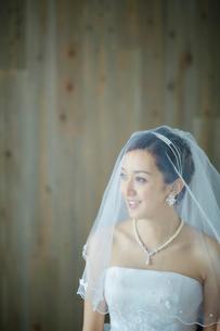 ベールを被った花嫁の写真素材 [FYI02064120]