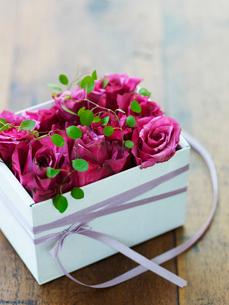 プレゼントイメージ 花の箱の写真素材 [FYI02064201]