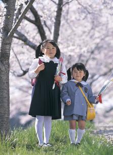 桜の木と新入学と新入園の女の子の写真素材 [FYI02064262]