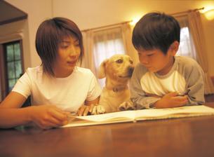 本を読む母親と男の子と犬の写真素材 [FYI02064464]