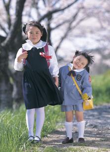 桜の木と新入学と新入園の女の子の写真素材 [FYI02064612]