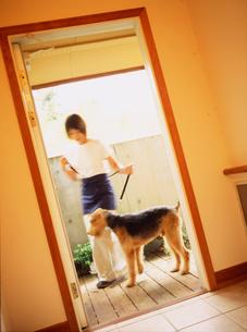 玄関の犬と女性の写真素材 [FYI02064794]