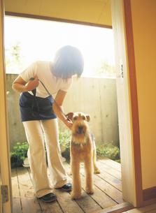 玄関の犬と女性の写真素材 [FYI02065053]