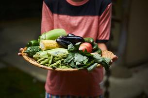 野菜を持つ男の子の写真素材 [FYI02065304]