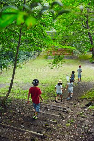 公園の階段を下りる子供達の写真素材 [FYI02065320]