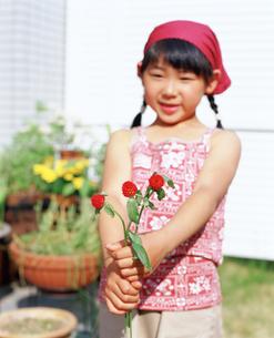 赤い花を持つ女の子の写真素材 [FYI02065707]