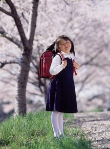 桜の木と新入学の女の子の写真素材 [FYI02066034]