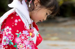 七五三和装の女の子横顔の写真素材 [FYI02066069]