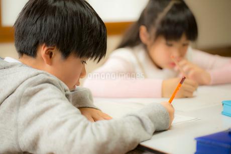 勉強する男の子と女の子の写真素材 [FYI02066109]