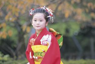 七五三和装の女の子の写真素材 [FYI02066299]