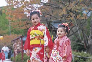 七五三和装の女の子2人の写真素材 [FYI02066324]