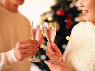 乾杯するカップルとクリスマスツリーの写真素材 [FYI02066354]