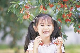 さくらんぼを持つ女の子の写真素材 [FYI02066355]