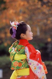 七五三和装の女の子の写真素材 [FYI02066549]