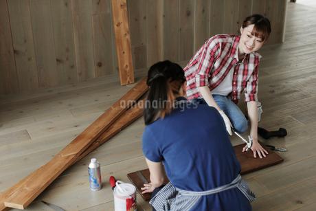 DIYを楽しむ女性2名の写真素材 [FYI02066559]