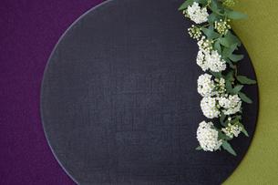 黒い盆とコデマリの写真素材 [FYI02066737]
