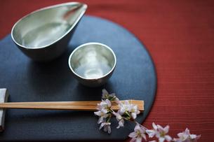 日本酒と桜の写真素材 [FYI02066822]