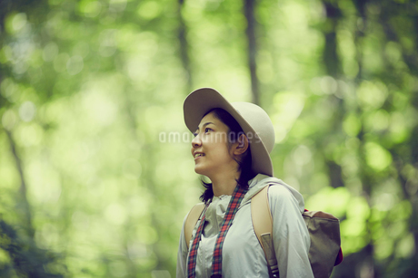 トレッキングをする女性の写真素材 [FYI02066980]