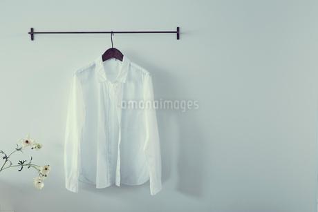 ハンガーに掛けたシャツの写真素材 [FYI02067048]